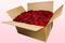 Confezione da 24 litri con petali di rosa stabilizzata di colore rosso scuro.