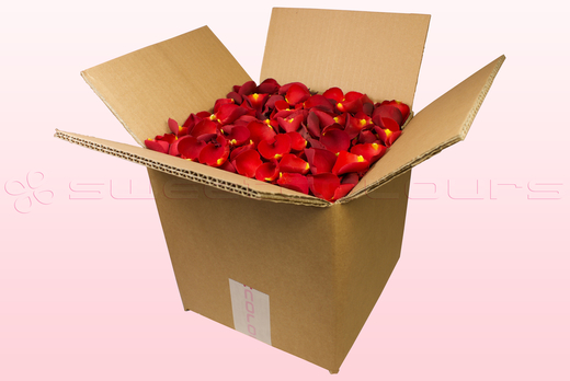8 Litre Box Bright Red Freeze Dried Rose Petals