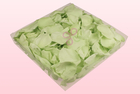 Final check 1 litre box preserved green rose petals