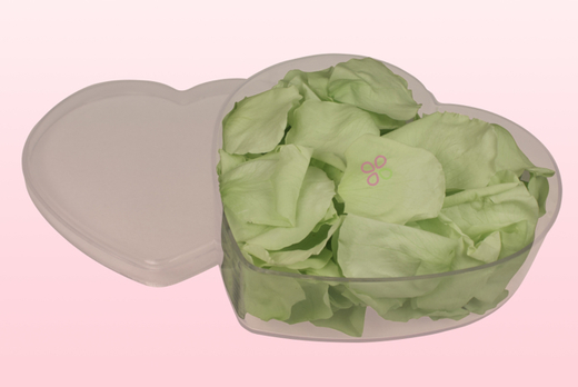 Heart Shaped Box With Mint Green Preserved Rose Petals