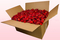 24 Litre Box Bright Red Freeze Dried Rose Petals