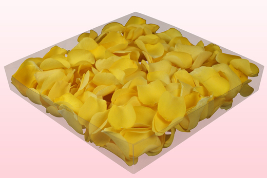 1 litre Box With Light Yellow Freeze Dried Rose Petals