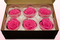 6 konservierte Rosenköpfe, Dunkelrosa, Größe L