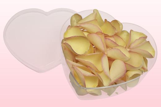 Cajita en forma de corazón con pétalos de rosa liofilizados de color amarillo-rosa.