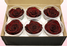 Preserved Rose Heads, Dark Brown, Size XL