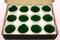 12 Geconserveerde Rozenkoppen, Donkergroen, Maat M