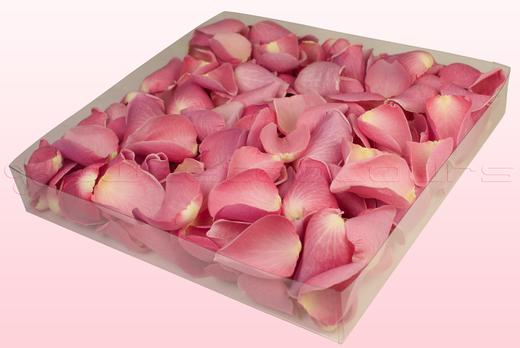 Emballage 1 litre de pétales de roses lyophilisés couleur rose pâle
