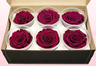 6 Preserved Rose Heads, Cerise Pink, Size XL