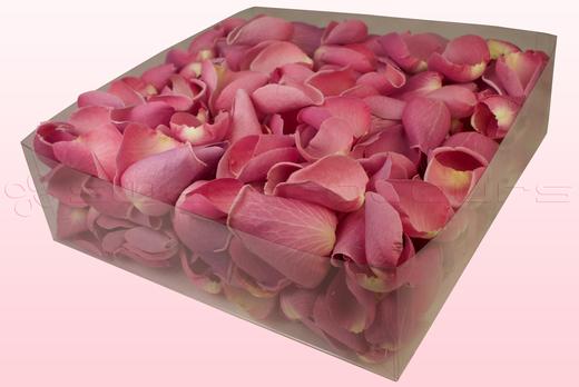 Emballage 2 litres de pétales de roses lyophilisés couleur rose pâle