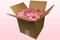 Caja de 8 litros con pétalos de rosa liofilizados de color rosa bébé.