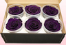 6 Preserved Rose Heads, Purple, Size XL