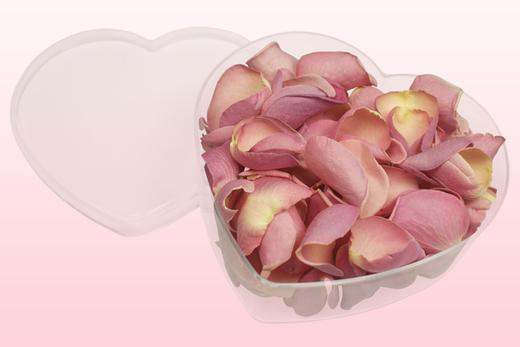 Pétales de roses lyophilisés couleur rose pâle. Présentés dans un Boîte en forme de cœur