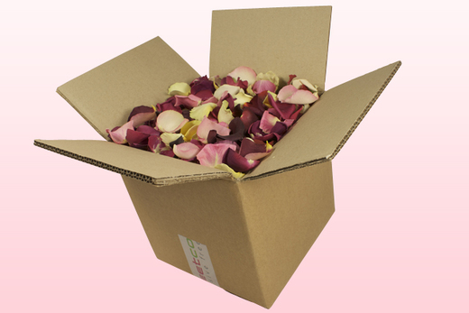 8 Litre Box B-Choice Mixed Freeze Dried Rose Petals