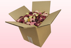 Final check 8 litre box with cheap b choice mixed freeze dried rose petals