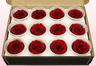 12 Preserved Rose Heads, Dark Red, Size M