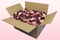 24 Litre Box B-Choice Mixed Freeze Dried Rose Petals