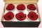 6 Geconserveerde Rozenkoppen, Donkerrood, Maat XL