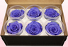 6 Preserved Rose Heads, Lilac, Size XL