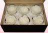 6 Geconserveerde Rozenkoppen Wit, Maat L