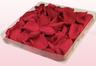 Emballage 1 litre de pétales de roses conservées couleur cerise