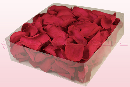 2 litre box with cranberry coloured preserved rose petals