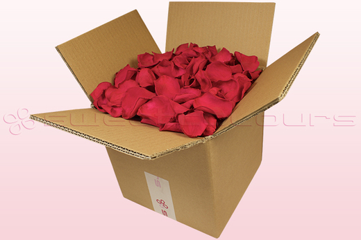 8 litre box with cranberry coloured preserved rose petals