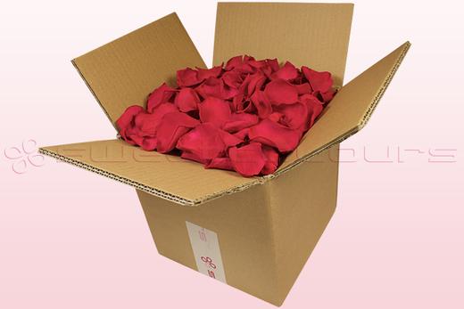Boîte de 8 litres de pétales de roses conservées couleur cerise