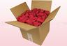 8 Liter Doos Met Geconserveerde Rozenblaadjes In De Kleur Kers