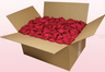 24 litre box with cranberry coloured preserved rose petals