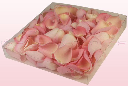 1 litre box with soft pink coloured freeze dried rose petals