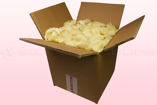 8 Litre Box Off White Freeze Dried Rose Petals