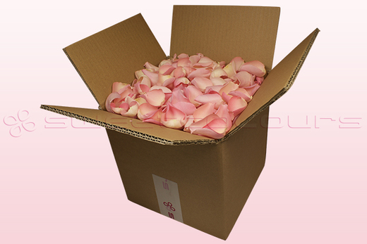 8 litre box with soft pink coloured freeze dried rose petals