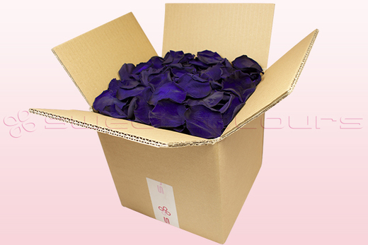 8 litre box with purple preserved rose petals