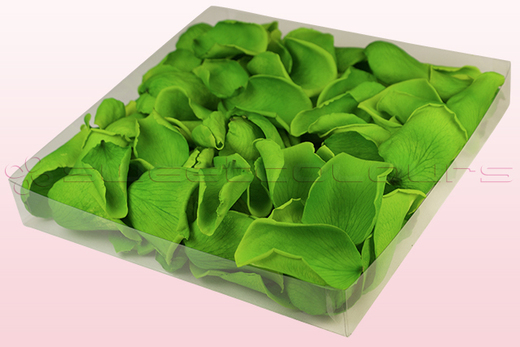 1 litre box with light green preserved rose petals
