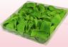 Envase de 1 litro con pétalos de rosa preservados de color verde claro