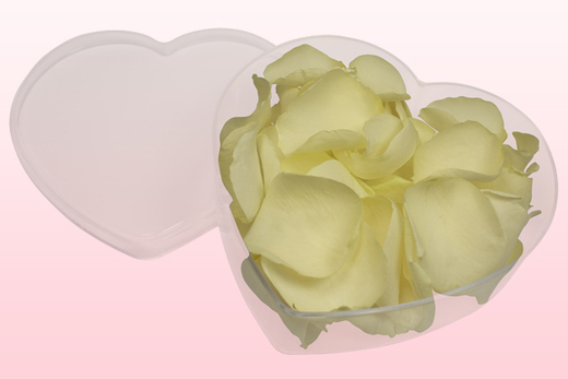 Heart Shaped Box With Off White Freeze Dried Rose Petals