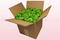 8 Liter Doos Met Geconserveerde Rozenblaadjes In De Kleur Lichtgroen