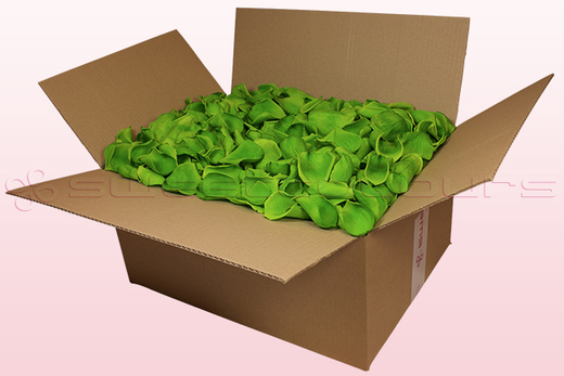 24 litre box with light green preserved rose petals