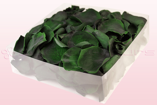 2 litre box with dark green preserved rose petals