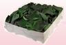 Envase de 2 litros con pétalos de rosa preservados de color verde oscuro