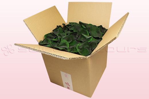 Caja de 8 litros con pétalos de rosa preservados de color verde oscuro