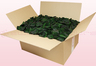 24 Liter Karton mit konservierten Rosenblättern in der Farbe Dunkelgrün