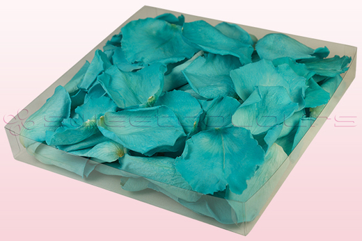 1 litre box with turquoise coloured preserved rose petals