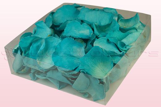 2 Liter Verpakking Met Geconserveerde Rozenblaadjes In De Kleur Turquoise