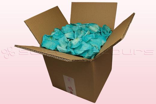 8 Liter Karton mit konservierten Rosenblättern in der Farbe Tükis