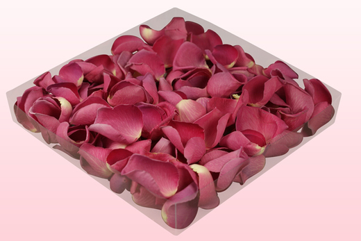 1 Litre Box With Classic Pink Freeze Dried Rose Petals