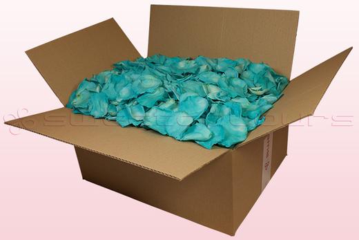 24 Liter Karton mit konservierten Rosenblättern in der Farbe Tükis