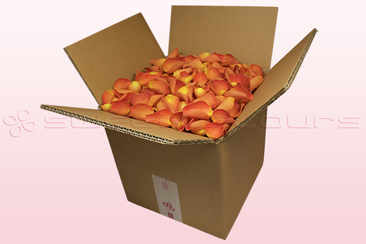 8 litre box with dark orange freeze dried rose petals