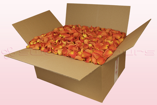 24 litre box with dark orange freeze dried rose petals