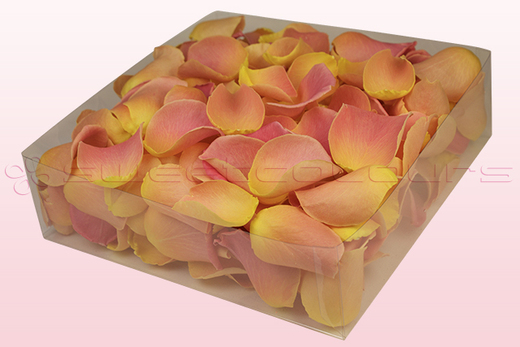 2 litre box with pink & peach coloured freeze dried rose petals